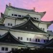 超速マッハ観光!名古屋と伊勢を突っ走れ!!(その19)名古屋城のライトアップが素敵だ!!