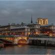 パリ、色違い