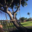 ハワイ旅行①