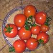 野菜をどんどん収穫しています(^o^)