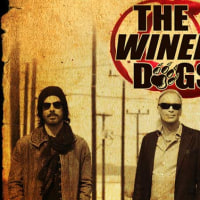 THE WINERY DOGS !!