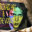 RICHARD HELL & THE VOIDOIDS/Gone to Hell