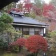 茨城県大子の紅葉とリンゴ