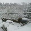 雪ヤベーな