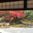 高台寺と圓徳院へ