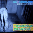 キリンの寝姿って?  夜の動物園