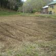 新しい畑の開墾