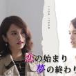 人気台湾ドラマ「恋の始まり 夢の終わり」DVD 全12話 日本語字幕