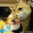 3歳のお祝いのバースデーケーキ♪