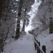雪の金剛山