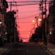 夕陽のガンマンではなくジャッキー What a beautiful sunset!