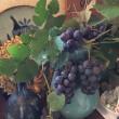 葡萄を花瓶に挿しました~