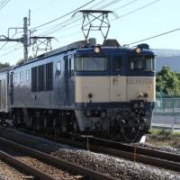 11月2日 205系配給列車を高崎線で撮影
