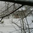 一日中雪降り