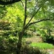 春日大社の藤&萬葉植物園の花々