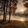 最後の秋風景・・・