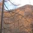 御座山(おぐらやま)へ栗生登山口より