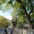琵琶湖博物館~近江八幡の街並み