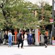 京都「祇園・白川」で写生会です