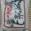 丹波篠山コシヒカリを購入しました