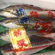 薩摩の「サワラ」炙りました!ブリ?カンパチ?ヒラマサ?「ツンブリ」だよ!!刺身と手作り干物の専門店「発寒かねしげ鮮魚店」。