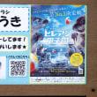 仙台うみの杜水族館 vol.109