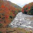 10月11日に訪れた竜頭の滝の紅葉5選