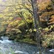 八甲田,奥入瀬,十和田湖,八幡平,弘前公園の紅葉を巡る旅