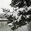 ★鉛色の空と浮雲☁ 春の雪 2018
