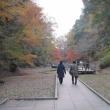 平成29年 千葉市遺族会靖国神社参拝~ 君津市 濃溝の滝へ 2-2