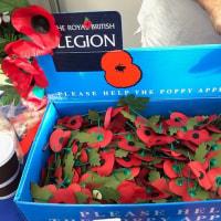 イギリスの秋を彩る季節外れの赤いポピー、戦没者の死を悼み傷病兵を支援する恒例の募金活動