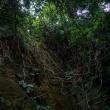 神奈川県横須賀市 猿島にて 風景写真 / Sony α7RⅡ