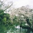 吉野紀行(終)・・・太閤秀吉の花見と庭