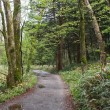 新緑の上高地散策 1