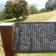七色大カエデ(池田町)