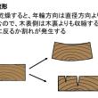 205.新人教育(木材の知識基本編):木材の構造と乾燥その3