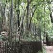 国の重要文化財 柳瀬荘