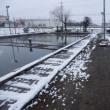 雪溶けました~