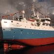 フォークランドのメロ漁業が再び認証された
