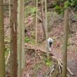 まち歩き北0882 京都一周トレイル 北山西部コース 72
