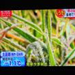 10/23 Jchan 冬の朝 3