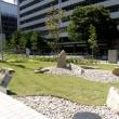 大阪国際がんセンターの残念石