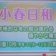 大歩危の渓谷美(17土)四国へ