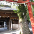 忍野八海・富士山麓へドライブ