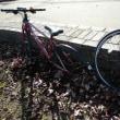 3.5ヶ月ぶりに自転車に乗てきました。No.499 <切腹後No.386(放射後No.1)>ルートH型