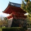 @ 世界遺産:京都の仁和寺美景、ドキドキ眺め @ (京都府京都市)