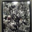 夏行った所その2、8/27「ユニバーサル・ネイチャー」日本の現代美術家6名によるカレワラ展