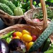 バラエティー豊かな食材を収穫