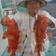 08月16日(水)オニカサゴ キダイ狙い
