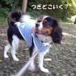 「HAYAMA STATION」と「南郷上ノ山公園」散歩
